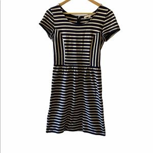 ANN TAYLOR Loft Navy&Tan Striped Tight Knit Dress